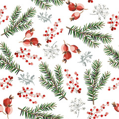 Christmas seamless pattern, red berries, green fir twigs, white background. Vector illustration. Nature design. Season greeting. Winter Xmas holidays