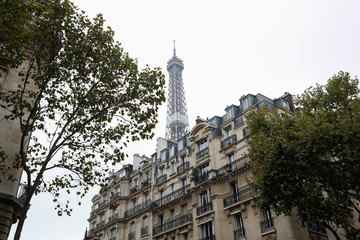 The Eiffel Tower stands near luxury Hausmannian buildings in the 7th arrondissement district of Paris