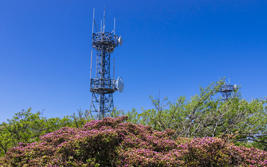 Detail view on Telecommunication and Television Towers inside Nature on the top of Mount Tsurumi. Beppu, Oita Prefecture, Japan.