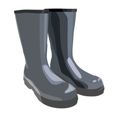 rubber boots vector illustration isolated