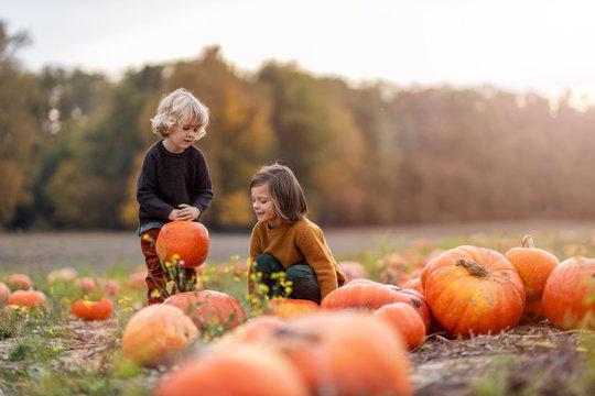 Two little boys having fun in a pumpkin patch
