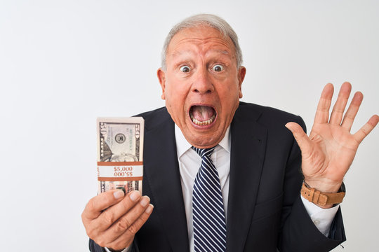 Senior grey-haired businessman wearing suit holding dollars over isolated white background very happy and excited, winner expression celebrating victory screaming with big smile and raised hands