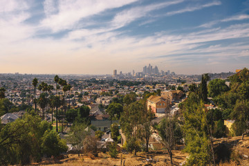 Wall Mural - City skyline of Los Angeles in California