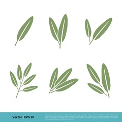 Sage Leaves Icon Vector Logo Template Illustration Design. Vector EPS 10.