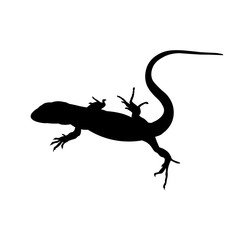 Silhouette of lizard, vector image in flat style