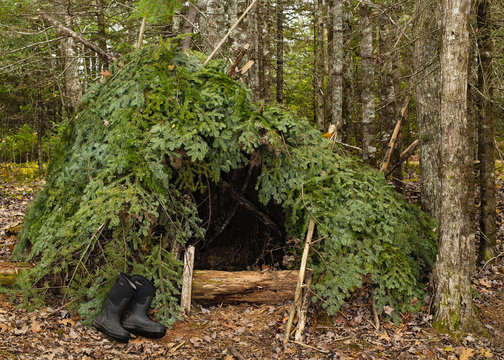 Wilderness Lean-to survival shelter in forest