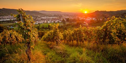 Weinberg Sonnenunterngang Remstal Sommer