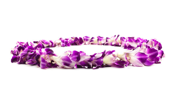 Isolated Purple Lei Flower Garland Isolated