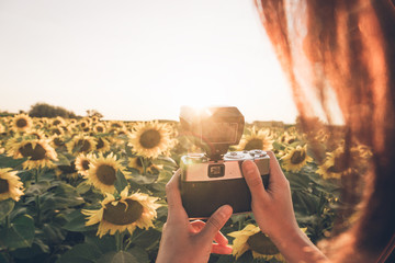 Crop unrecognizable photographer standing in middle of field with bright sunflowers and taking picture of sunset