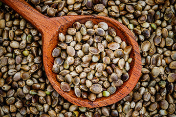 Hemp seeds and flower in wooden spoon, close up macro. Hemp seed background, closeup, top view