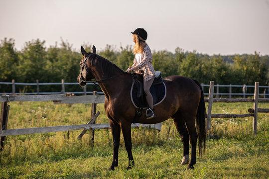 Girl riding a horse, Young girl riding a horse
