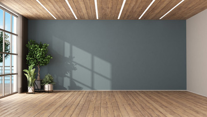 Empty room with plants and blue wall Wall mural
