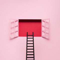 Ladder in the window