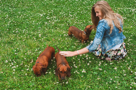 Woman playing with three dachshunds