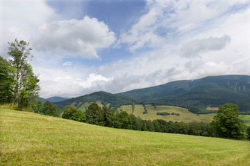 Canvas Prints Hill Summer Landscape in the Mountain Jesenik, Czech Republic