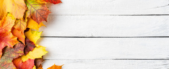 Autumn leaves on white wooden table with copyspace. Flat lay. Banner
