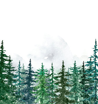 Watercolor winter pine trees forest on white background. Hand painted spruce and pine trees illustration with falling snow. Landscape scene for Christmas cards, banners. Holiday design.