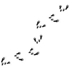 illustration with rat tracks. rat footprints.