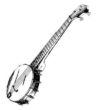 Rendered View of a Banjo, vintage illustration.