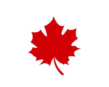 Canadian Maple leaf Logo, Maple Leaf Illustration Vector Design