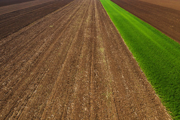 Fototapeta Aerial view of ploughed agricultural field in perspective obraz