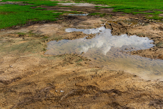 Dirt lawn is defective, and the water on the morning surface makes difficulty in using