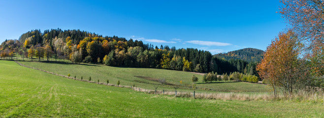 Panoramic autumn scenery. Green meadow with line of small young trees under azure sky. Natural sunlit mountain grassland in landscape with look on Vysoky kamen or Slepice hill. South Bohemia, Europe.