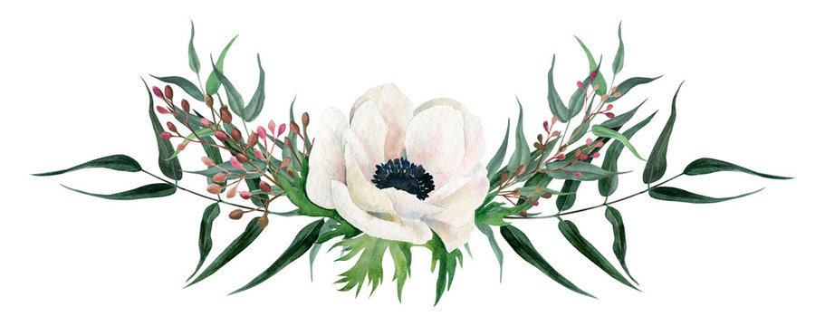 Beautiful watercolor arrangement, hand drawn illustration. Anemones.