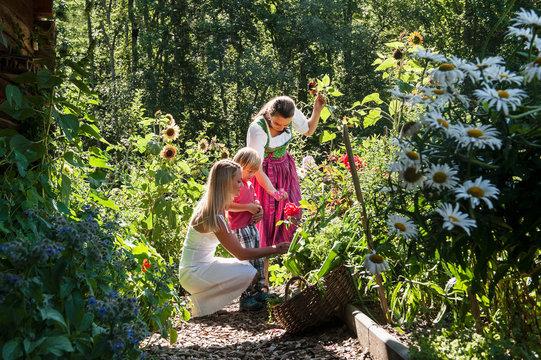Austria, Altenmarkt, Mother and child watching farmer in garden