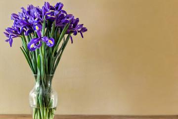 Poster Iris Irises in Vase
