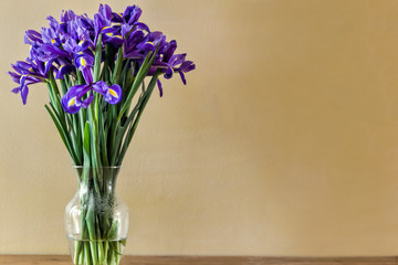 Fotorolgordijn Iris Irises in Vase