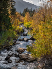 West Carson River, Autumn