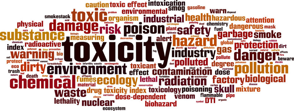 Toxicity word cloud