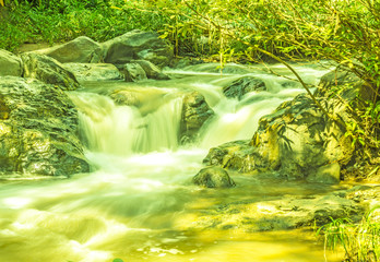 Canvas Prints Yellow Flowing water and sun light
