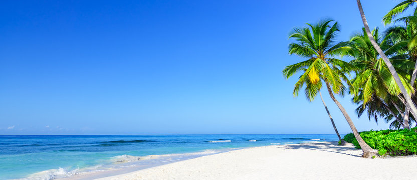 paradise tropical beach sea on a tropical