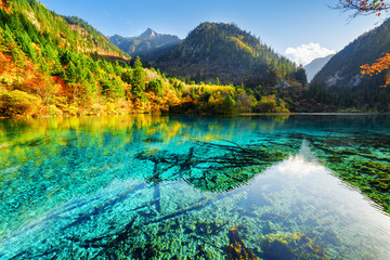 Beautiful yellow autumn forest reflected in the Five Flower Lake