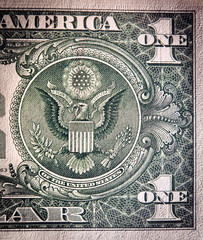 Poster Imagination Dollar bill, close up view