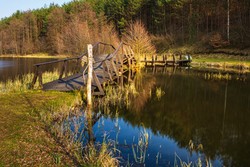 Fototapeta Small lake surrounded by forest, Dywan, Poland. obraz