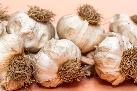 aglio, treccia di aglio