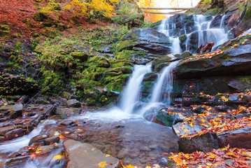beautiful scenery of waterfall shypot. sunny autumn afternoon. fallen foliage and moss on a massive boulders. rapid water steam of carpathians. popular travel destination