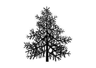 Spruce black silhouette vector. Spruce icon isolated on a white background. Conifer tree vector