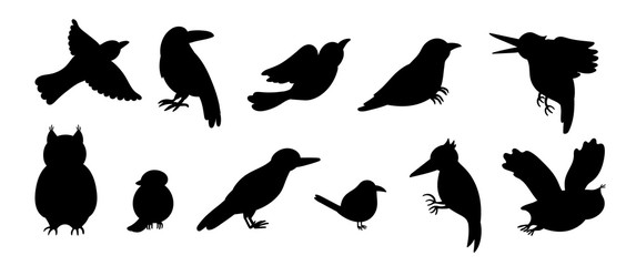 Vector set of cartoon style hand drawn flat funny cuckoos, woodpeckers, owls, raven, wren silhouettes. Cute black and white illustration of woodland birds for children's design. .