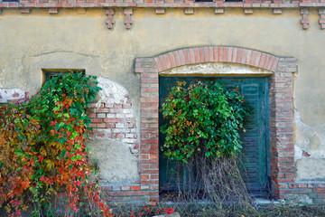 Fototapete - Verlassene Arbeiterhäuser eines ehemaligen Ziegelwerkes in Niederösterreich