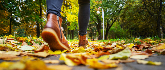 Back view on the feet of a woman in black pants and brown boots walking in a park along the sidewalk strewn with fallen leaves. The concept of turnover seasons. Weather background