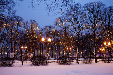 Festive romantic fairytale winter evening park landscape. Snow covered trees, Christmas light chains garland decoration and street lights. Fotomurales
