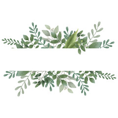 Fototapeta Botanic Card, Watercolor invitation design with herbs and leaves.  Hand painted floral background. Template. green Frame. drawing nature obraz