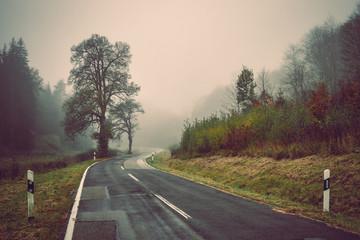 Foggy autumn landscape, sad feelings in the nature. Dark, soft colors. Bad mood, depression concept