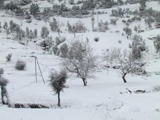 Snow - Ketama Morocco