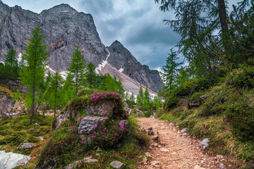 Wall Mural - Beautiful spring landscape with hiking trail in Julian Alps, Slovenia
