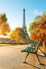 Fototapete - Eiffel Tower in autumn